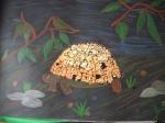 tartaruga con guscio di uova