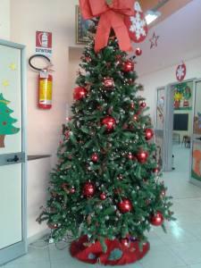 albero scuola