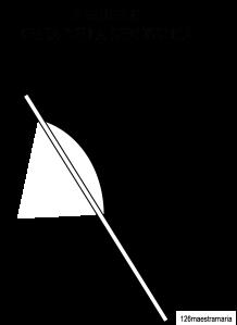 scheda bandiera